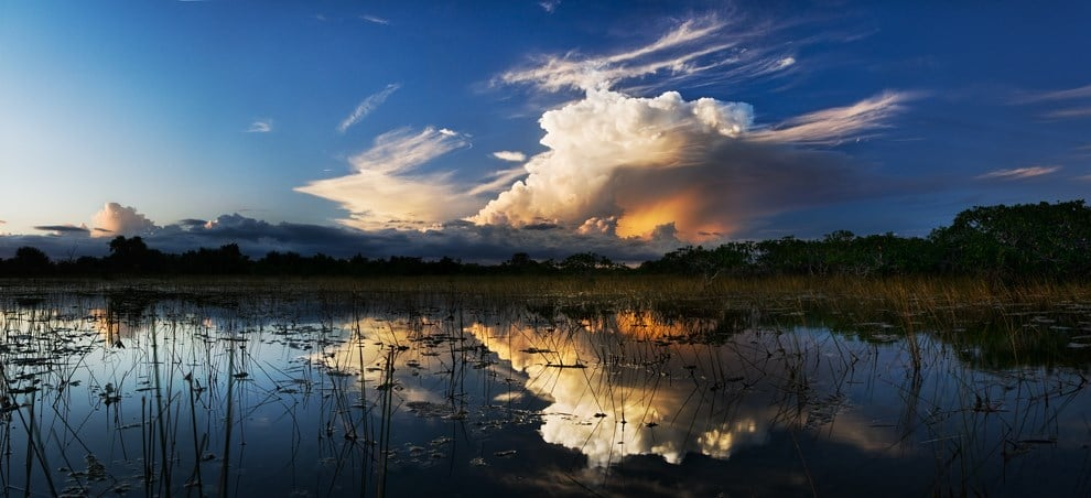 A visit to the sprawling Everglades in Florida is one of the best things to do in America.