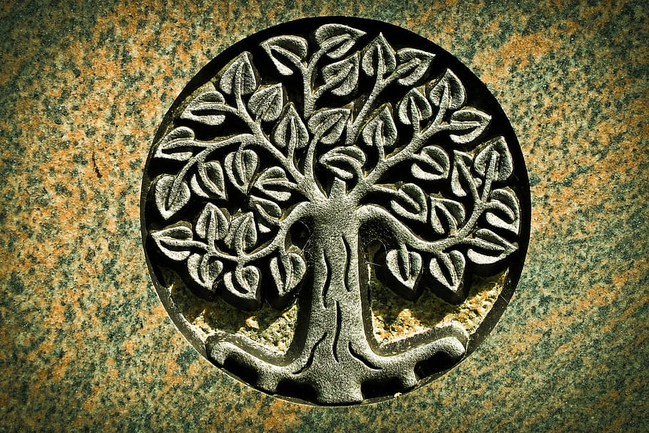 The Tree of Life is one of the most popular Irish celtic symbols.